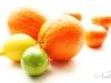 Апельсиновое солнце