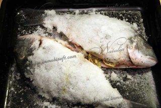 Дорада (ората) в соли